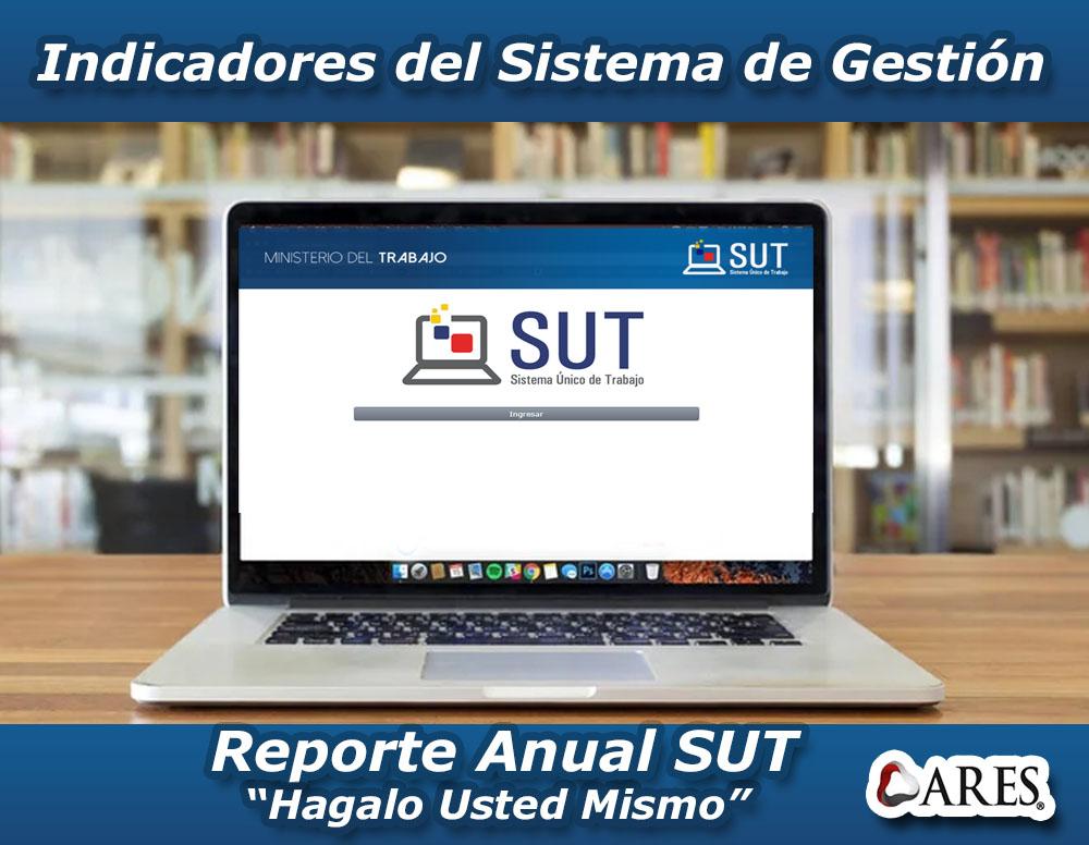 Indicadores del Sistema de Gestión - Registro Anual SUT