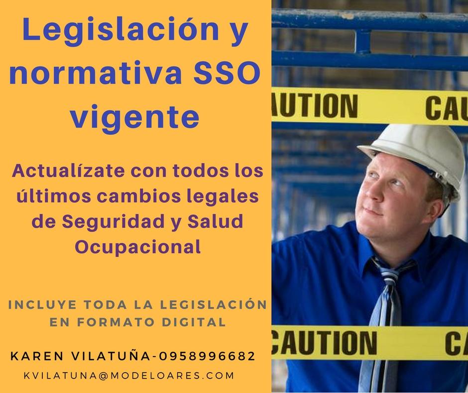 Curso Actualización legal SSO virtual